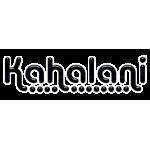 Подвески (trucks) для лонгборда Kahalani Trucks